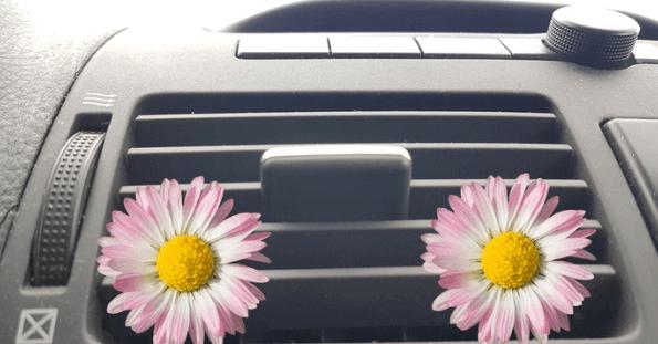 Clean your car HVAC system